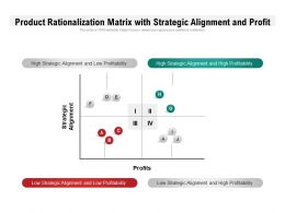 Product Rationalization Matrix With Strategic Alignment And Profit