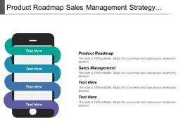 Product Roadmap Sales Management Strategy Strategic Portfolio Roadmap