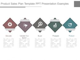Product Sales Plan Template Ppt Presentation Examples