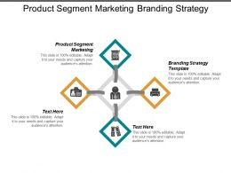 Product Segment Marketing Branding Strategy Template Performance Management Cpb
