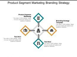 Product Segment Marketing Branding Strategy Template Performance Management Cpb