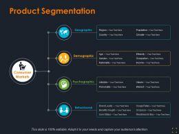 Product Segmentation Ppt Summary Graphics Template