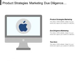 Product Strategies Marketing Due Diligence Marketing Competence Leadership Cpb