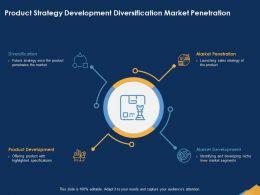 Product Strategy Development Diversification Market Penetration Niche Ppt Powerpoint Presentation File Icon