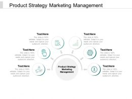 Product Strategy Marketing Management Ppt Powerpoint Presentation Icon Slide Download Cpb