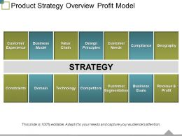 Product Strategy Overview Profit Model Ppt Templates