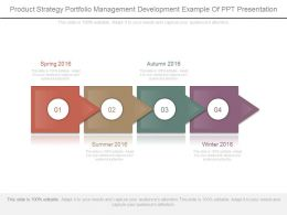 Product Strategy Portfolio Management Development Example Of Ppt Presentation
