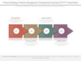 Product Strategy Portfolio Management Development Example Of Ppt Presentation