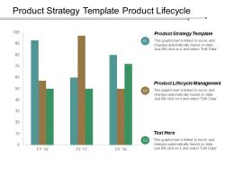 Product Strategy Template Product Lifecycle Management Knowledge Management Cpb