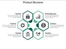 Product Structure Ppt Powerpoint Presentation Slides Portfolio Cpb
