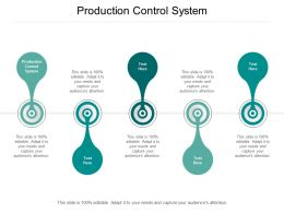 Production Control System Ppt Powerpoint Presentation Model Guide Cpb