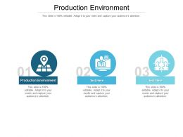 Production Environment Ppt Powerpoint Presentation Summary Guide Cpb