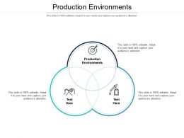 Production Environments Ppt Powerpoint Presentation Gallery Images Cpb