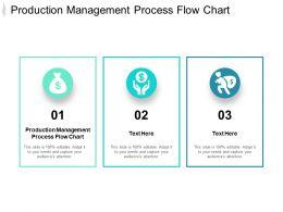 Production Management Process Flow Chart Ppt Powerpoint Presentation Ideas Designs Cpb