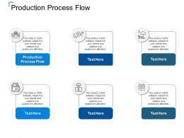 Production Process Flow Ppt Powerpoint Presentation Professional Cpb