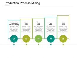 Production Process Mining Ppt Powerpoint Presentation Portfolio Maker Cpb
