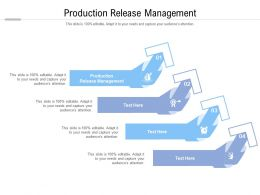 Production Release Management Ppt Powerpoint Presentation Professional Grid Cpb