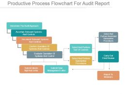 Productive Process Flowchart For Audit Report Ppt Infographics