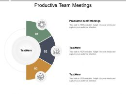 Productive Team Meetings Ppt Powerpoint Presentation Layouts Elements Cpb
