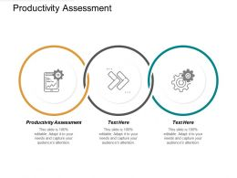 Productivity Assessment Ppt Powerpoint Presentation Slides Format Cpb