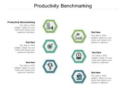 Productivity Benchmarking Ppt Powerpoint Presentation Professional Layouts Cpb