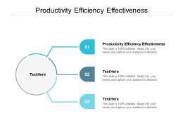 Productivity Efficiency Effectiveness Ppt Powerpoint Presentation Show Ideas Cpb