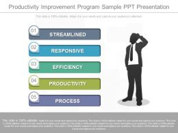 Productivity Improvement Program Sample Ppt Presentation