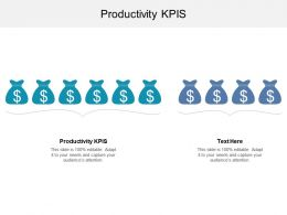 Productivity KPIS Ppt Powerpoint Presentation Gallery Guide Cpb