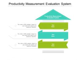Productivity Measurement Evaluation System Ppt Powerpoint Presentation Outline Maker Cpb