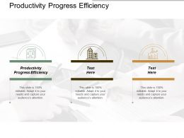 Productivity Progress Efficiency Ppt Powerpoint Presentation Example File Cpb