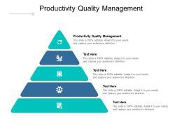 Productivity Quality Management Ppt Powerpoint Presentation Ideas Cpb