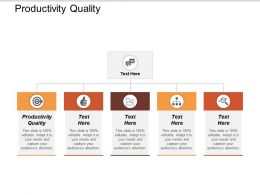Productivity Quality Ppt Powerpoint Presentation Icon Designs Download Cpb