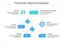 Productivity Reports Employees Ppt Powerpoint Presentation Layouts Deck Cpb