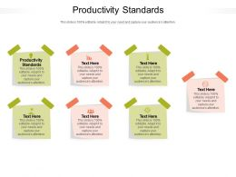 Productivity Standards Ppt Powerpoint Presentation Infographics Elements Cpb
