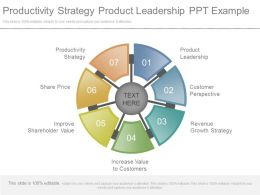 Productivity Strategy Product Leadership Ppt Example