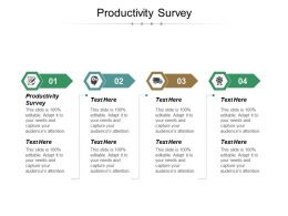 Productivity Survey Ppt Powerpoint Presentation File Professional Cpb