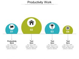 Productivity Work Ppt Powerpoint Presentation Icon Brochure Cpb