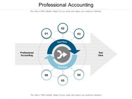 Professional Accounting Ppt Powerpoint Presentation Icon Microsoft Cpb