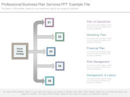 Professional Business Plan Services Ppt Example File