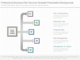 Professional Business Plan Services Template Presentation Backgrounds