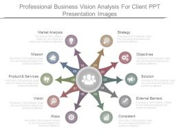Professional Business Vision Analysis For Client Ppt Presentation Images