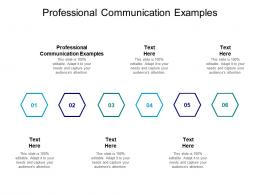 Professional Communication Examples Ppt Powerpoint Presentation Outline Format Cpb