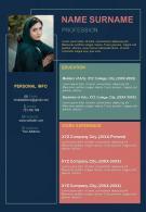 Professional CV Format For Job Interview