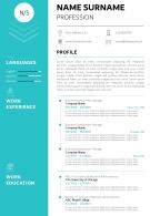 Professional CV Sample Template With Profile Summary