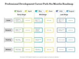 Professional Development Career Path Six Months Roadmap