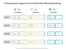 Professional Development Career Path Three Months Roadmap