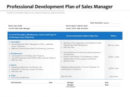 Professional Development Plan Of Sales Manager