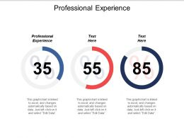 Professional Experience Ppt Powerpoint Presentation Gallery Themes Cpb