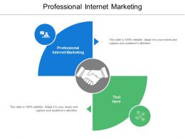 Professional Internet Marketing Ppt Powerpoint Presentation Ideas Deck Cpb
