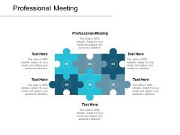 Professional Meeting Ppt Powerpoint Presentation Ideas Maker Cpb